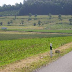 Driedaagse Vianden 2007-07